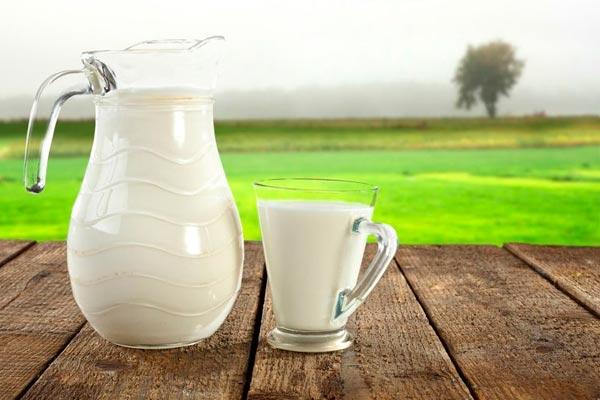 Porque o leite de baixo teor de gordura ajuda a perder peso