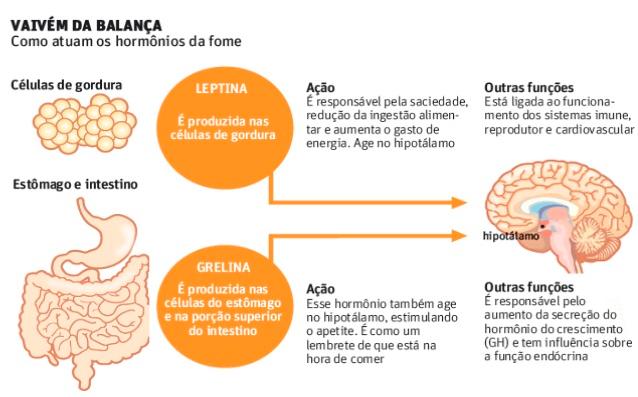 leptina-hormônio-da-fome