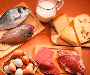 proteinas-e-gorduras