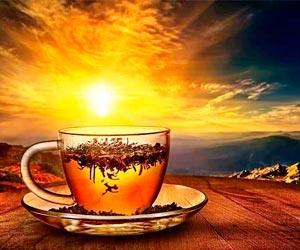 chá-para-saude