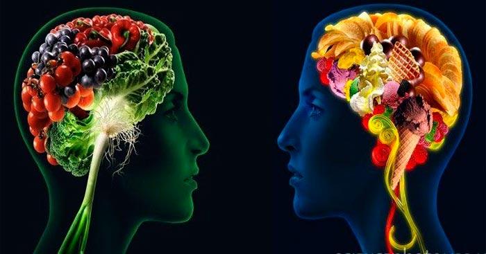 o-cerebro-e-a-comida