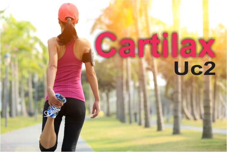 Cartilax UC2