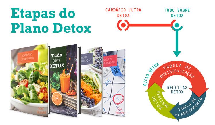 programa do curso detox