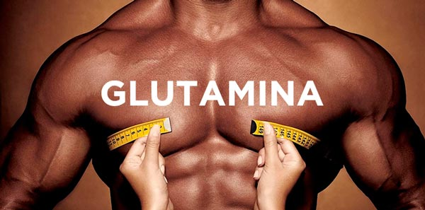 glutamina-para-ganhar-massa-muscular