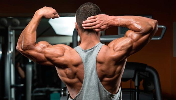 suplemento-para-ganhar-musculos