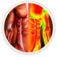 acelera-o-metabolismo