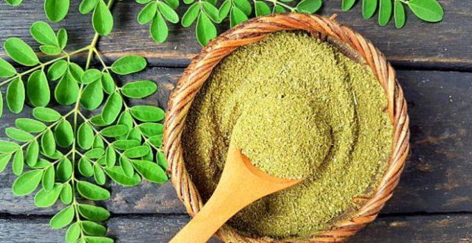 Moringa-oleifera-benefícios