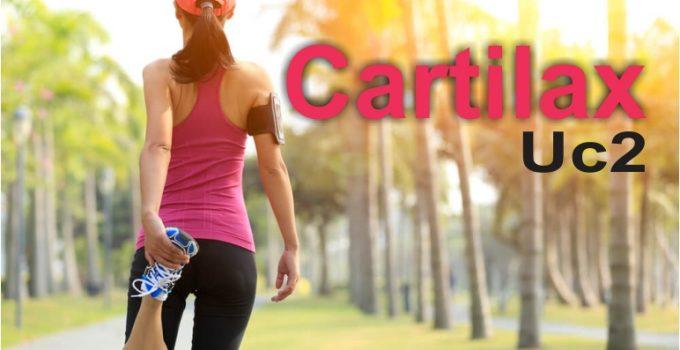 Cartilax UC2 promete restaurar as articulações,deixando-as fortese totalmente saudáveis