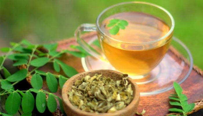 chá-de-moringa-oleifera
