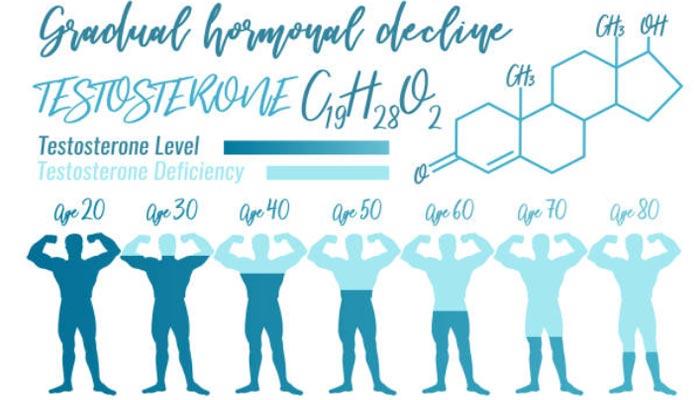 perda-de-testosterona-ao-longo-da-vida